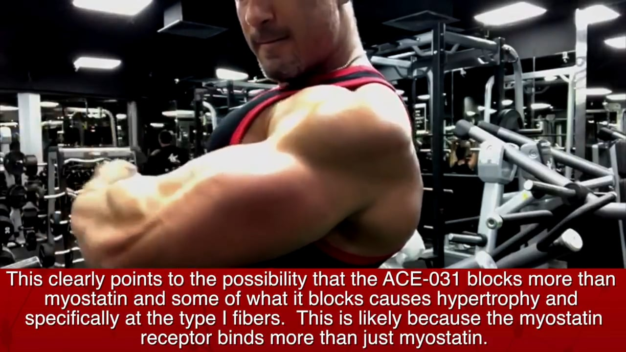 All About Tb-500 Peptide | Anabolic TV