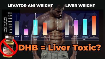 DHB-Dihydroboldenone-The-Most-Overhyped-And-Liver-Toxic-Injectable-Steroid-YT-Thumbnail.jpg