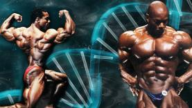 Flex-Wheeler-Myostatin-Deficiency-YT-Thumbnail.jpg