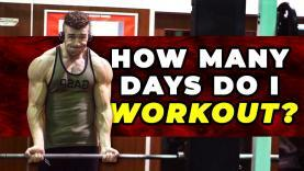 How-Many-Days-Per-Week-I-Workout-To-Maintain-My-Physique-YT-Thumbnail.jpg